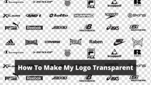How To Make My Logo Transparent in 2021 (2 Ways Explained)